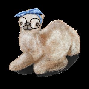 Baby Kamel Dromedar Nerd Brille Kopfband