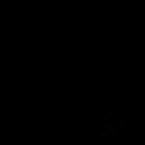 Taucher | Tauchen Tauchausrüstung Meer Geschenke