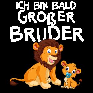 Großer Bruder Löwen Schwangerschaft Sohn Enkel