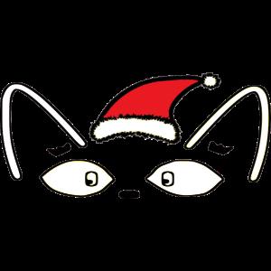Katze mit Weihnachtsmütze / Weihnachten