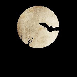 Fledermaus Nacht
