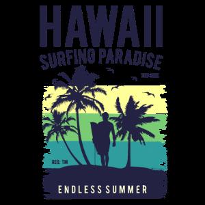 Hawaii Surfing Paradise
