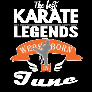 Karate-Legenden werden im Juni Jungen geboren