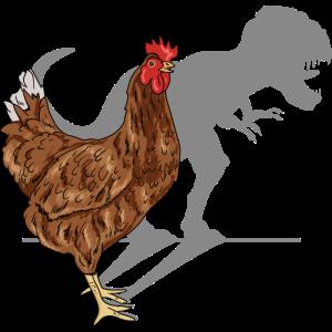 Huhn Tyrannosaurus Schatten Hühner Dinosaurier