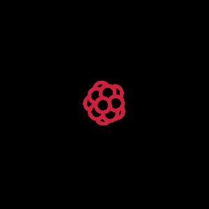 Atom (2c)