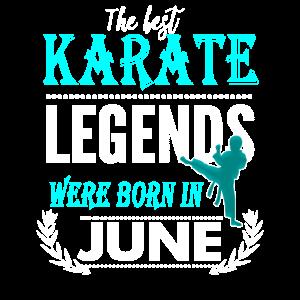 Karate Legends werden im Juni geboren