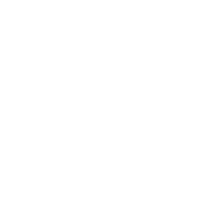 Fridays for Future weiss