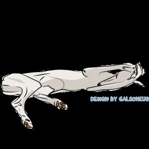 galgoneus design 6