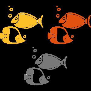 Korallenrifffische