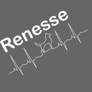 EKG Hund Renesse