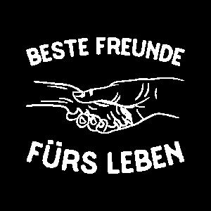 Beste Freunde fürs Leben - Mensch und Hund & Katze