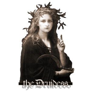 Druidessa
