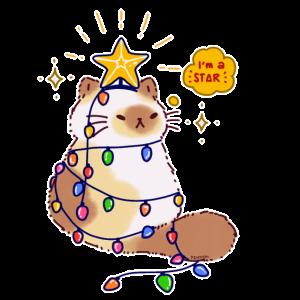 Katze Lichterkette Stern Weihnachtsbaum Geschenk