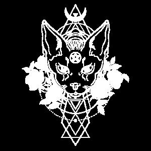 Okkult Geometrie Wicca Hexen Pentagram Satan Katze