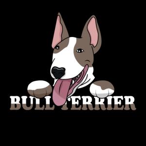 Hund Bullterrier Hunde Dog Hundebesitzer Tiere