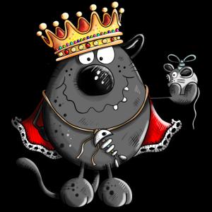 Katzen King