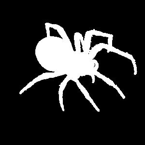 Spinne Spinnen Silhouette