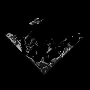 Even Aliens Love Mountains | Fliegende Untertasse