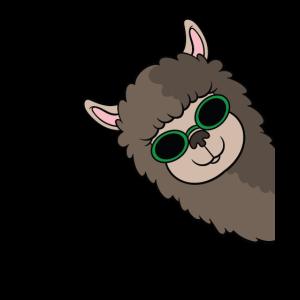 Alpaka Sonnenbrille Landwirt Lama Liebhaber