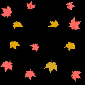 Mein erster Herbst
