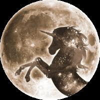 Magisches Einhorn, Vollmond Mond, Space
