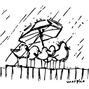 Wir stehen im Regen