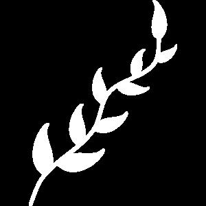 Zweig Ast Blätter Blätterranke Blumenranke Dekor