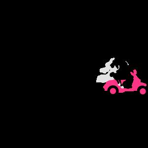 Evolution Flitterwochen Motorroller 09 2016