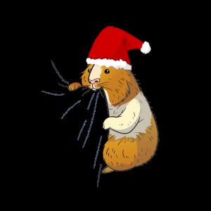Meerschweinchen Süß Haustier Liebhaber Weihnachten