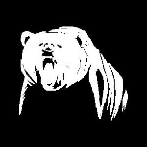 Bär ist verärgert mit weißem Bär am brüllen