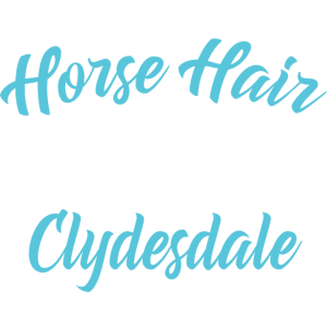 Glitter Clydesdale