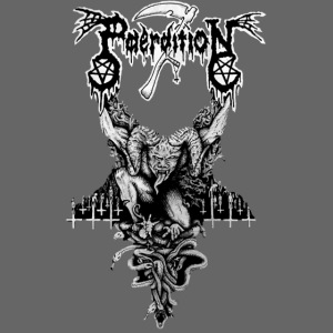 paerdition logo
