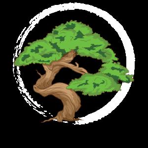 Bonsai Baum als Zen Master , Japanisches Ying Yang