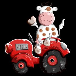 Kuh fährt Traktor