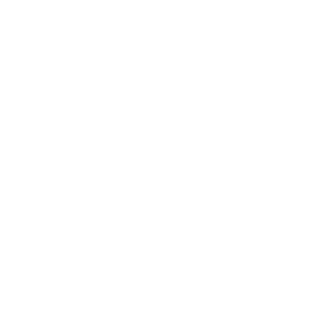JETZT HANDELN! Fridays for future Demonstration