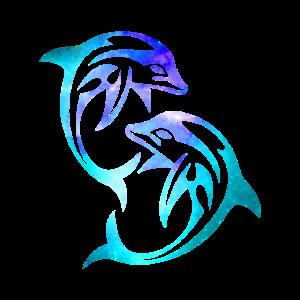 Delfin Dolphin