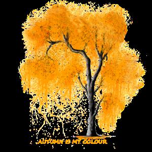 Herbst Baum Herbst