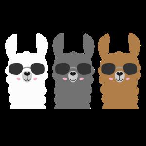 Alpakas mit Sonnenbrille Lama HaustierGeschenk