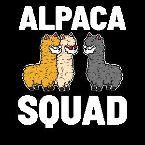 Alpaka-Kader