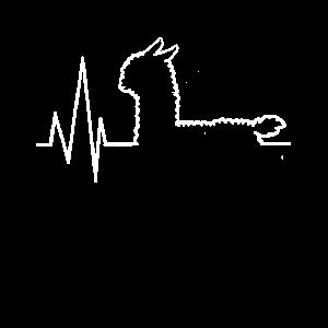 Alpaka Alpaca Lama Herz Herzschlag