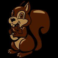 Eichhörmchen futter freude süss lieb