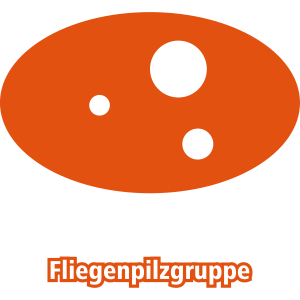 Fliegenpilzgruppe outline 2FRabig