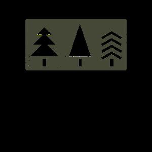 Drei Tannenbaeume Winter Geschenk