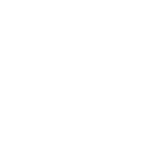 Boosted Lifestyle