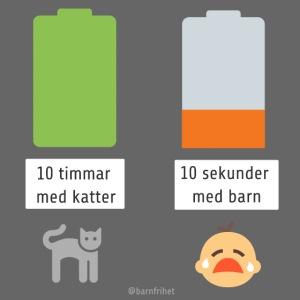 Livsbatteriet KATT