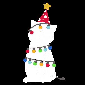 Weihnachten Katze Christmas Advent Santa Geschenk