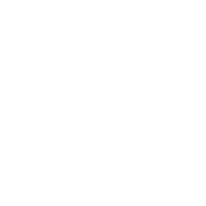 Miami Fashion