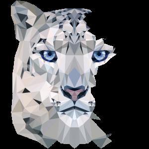 Snow Leopard Split
