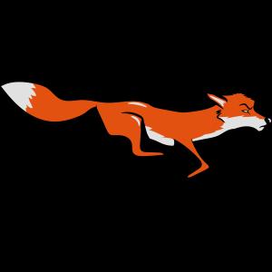 Fuchs laufen rennen
