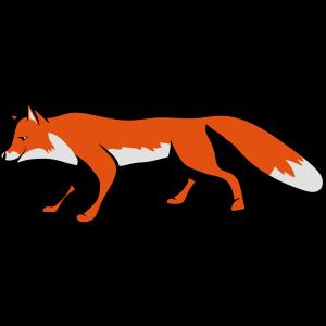 Fuchs süss laufen